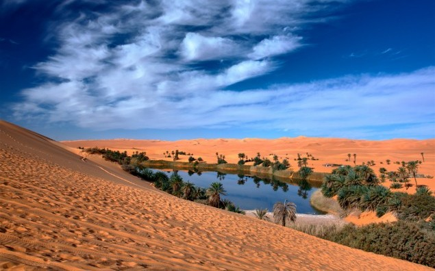 Oasi in sahara desert under blu sky